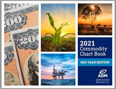 MidYear ChartBook 2021